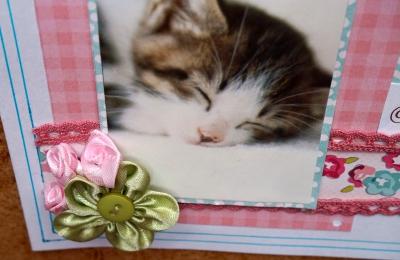 Carte Joyeux Anniversaire Milena19 - ScrapD